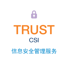 TrustCSI Information Security Services